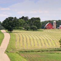 RuralAgriculture